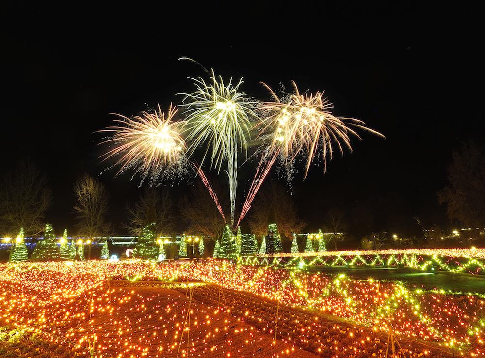 とっとり花回廊の花火