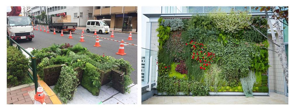みのる産業株式会社の壁面緑化