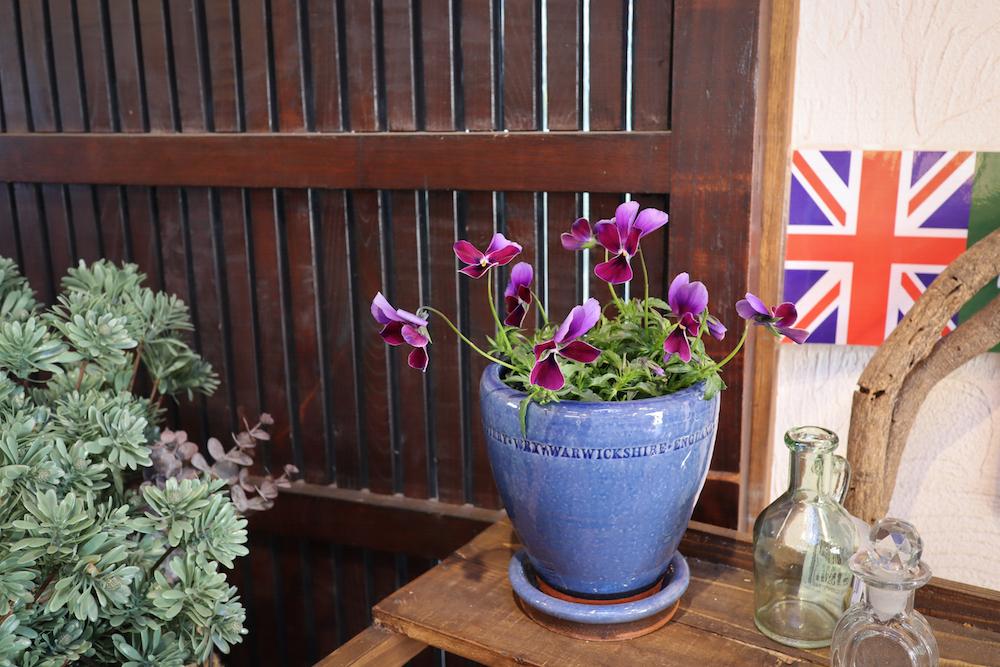 ウィッチフォードの鉢 ブルーカラー