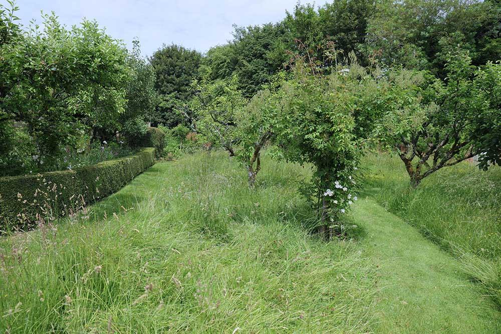 アプトン・グレイの果樹園