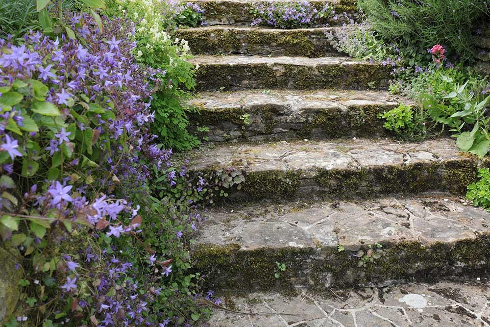 アプトン・グレイの階段