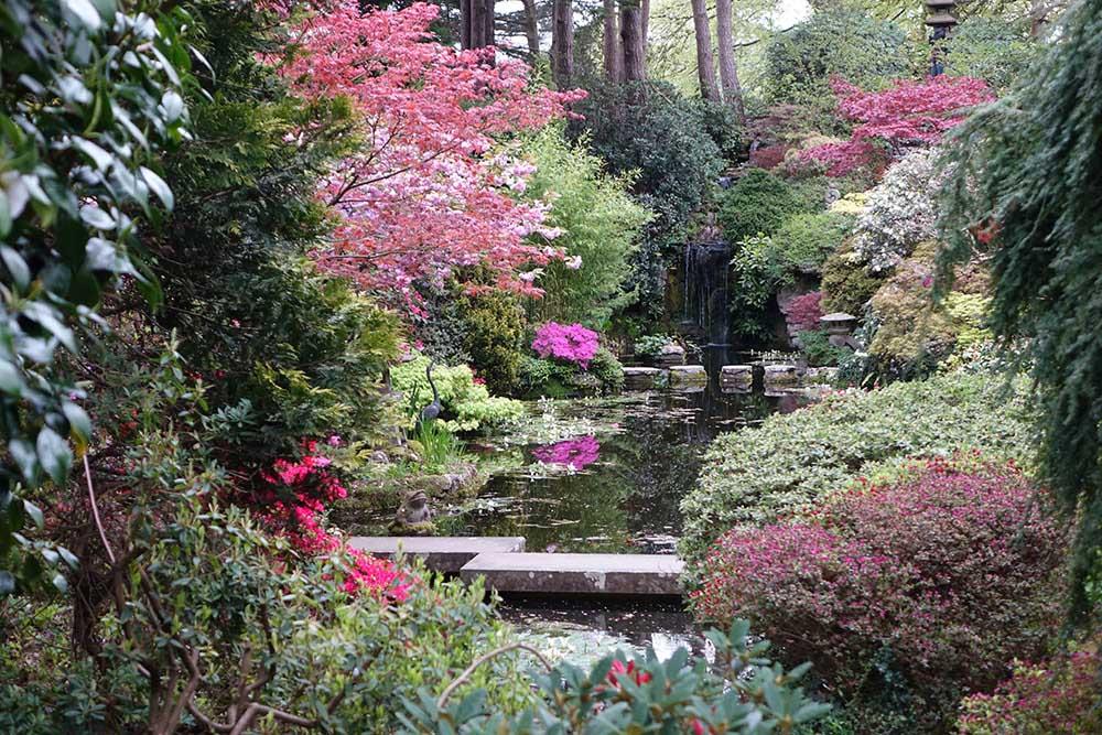 コンプトン・エーカーズの日本庭園の池