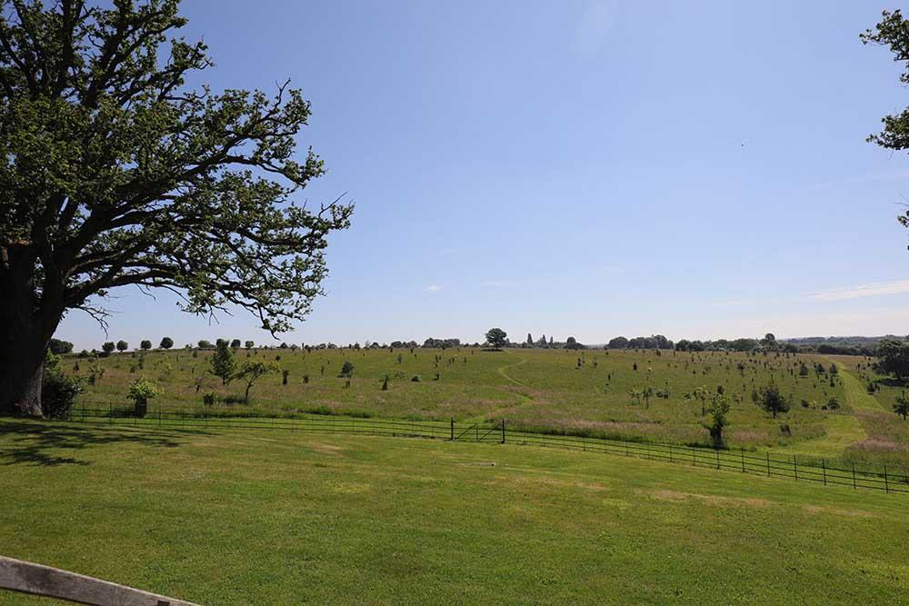 ブロートン・グランジ ミドルテラスの草地