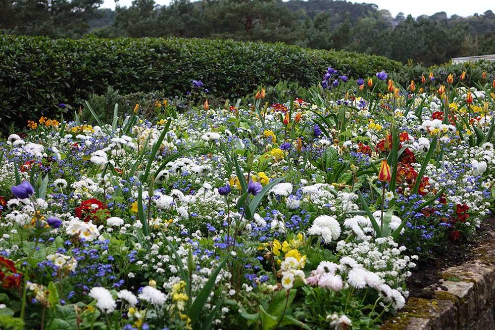 コンプトン・エーカーズの花壇