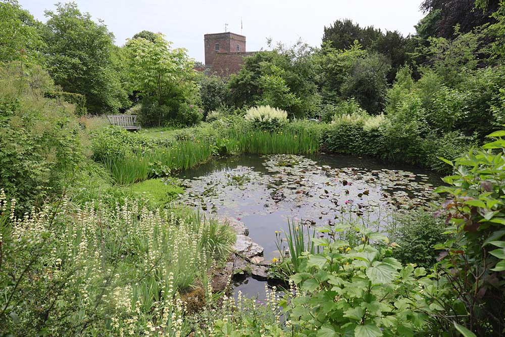 アプトン・グレイの池のあるエリア