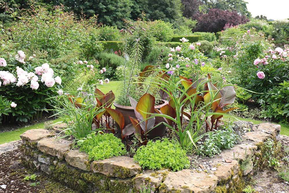 アプトン・グレイの花壇
