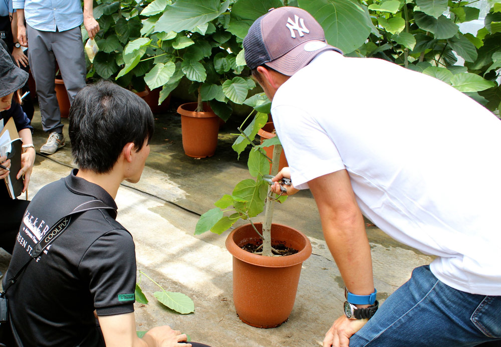 根がある植物は、出荷された後も管理できることが大切