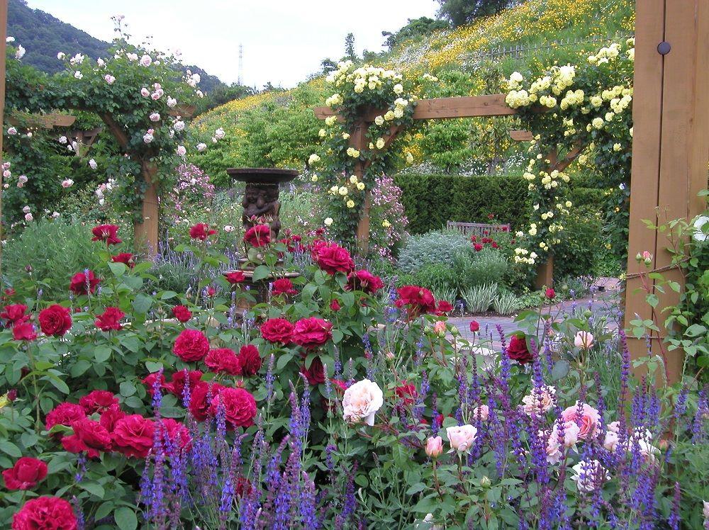 深山イギリス庭園