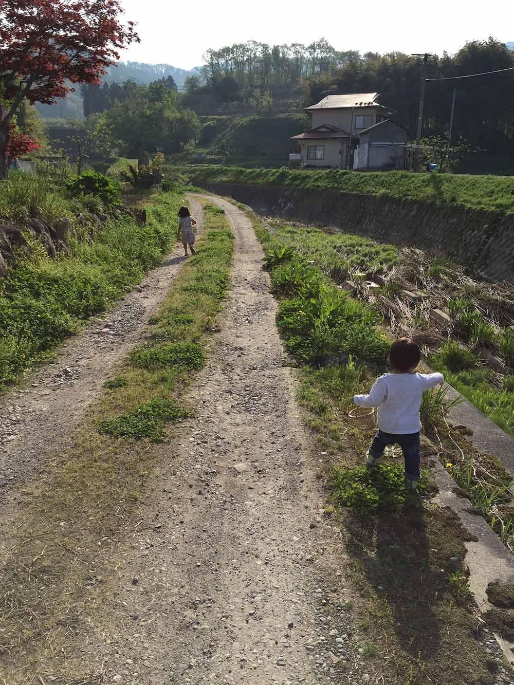 山菜摘み、野草摘み