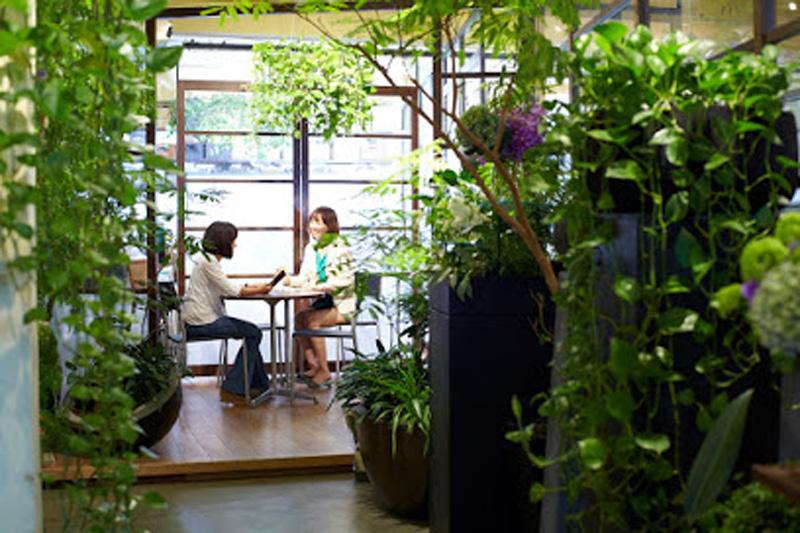 人が潜在的に持つ、環境と植物を大切に想う「共生の意識」。