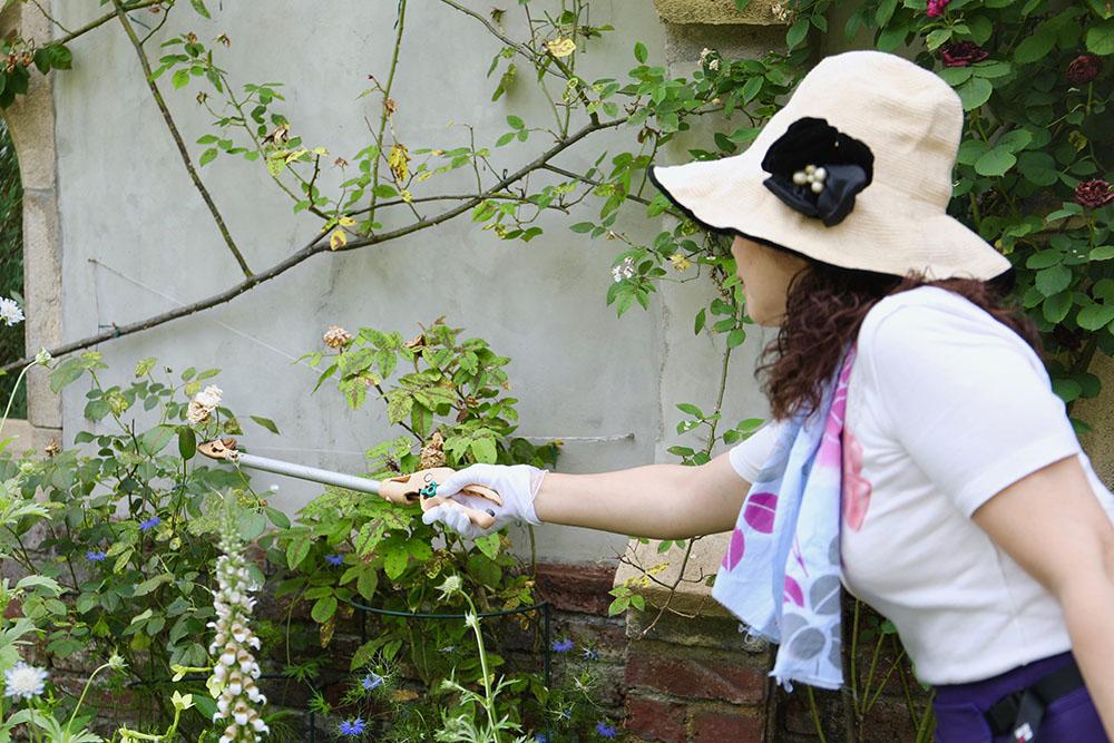花がら摘みの道具