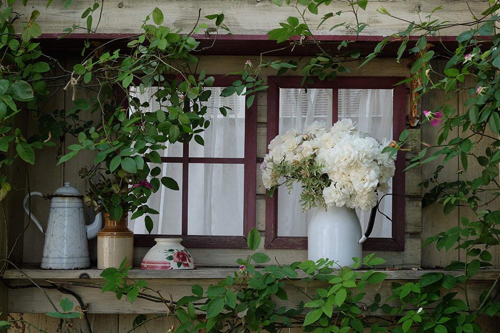 バラの窓辺