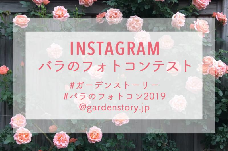Garden Storyインスタバラのフォトコンテスト