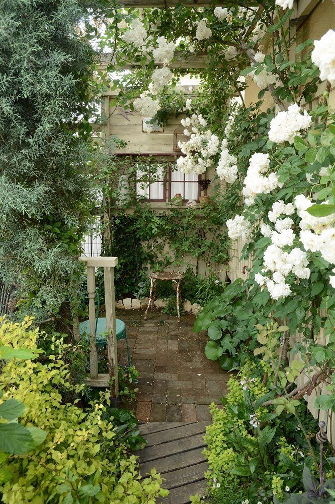 ガーデンの通路