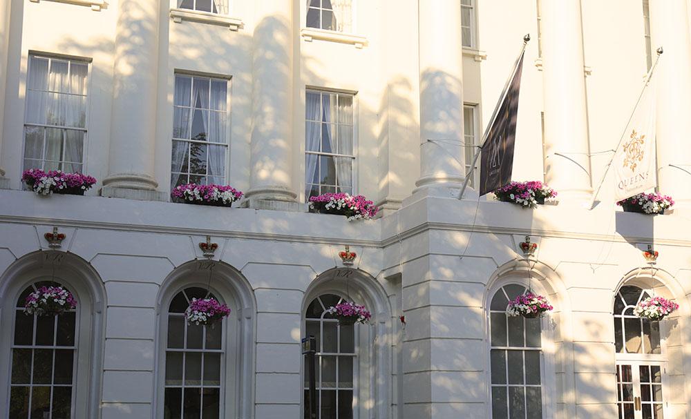 白とピンクのペチュニアで飾ったホテル