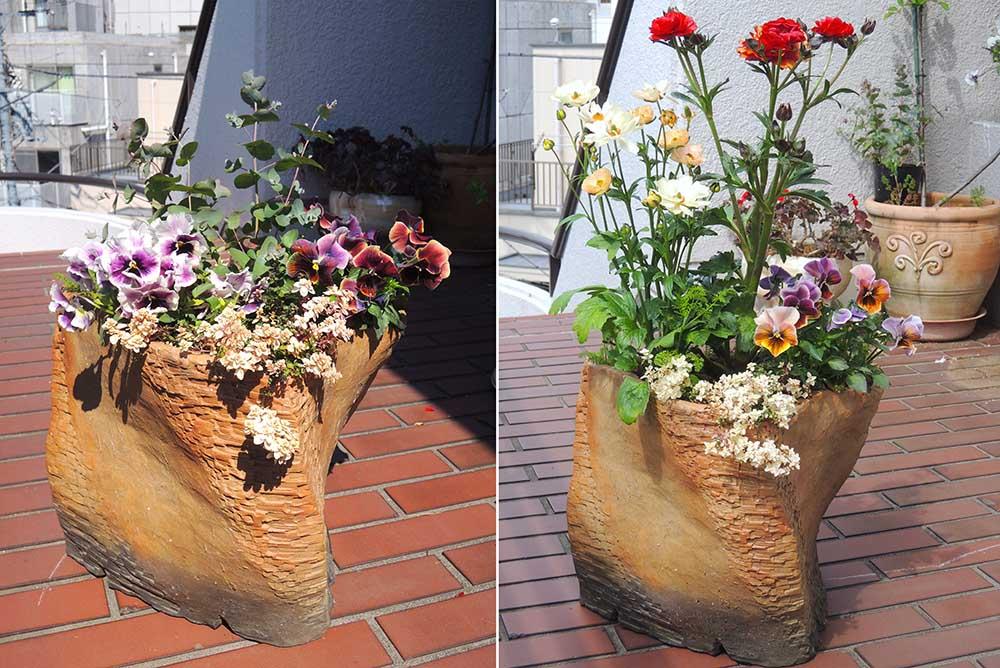 清水さんの植木鉢