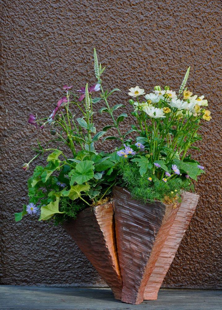 清水さんの鉢に寄せ植え