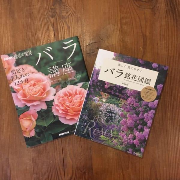 バラ講座とバラ図鑑