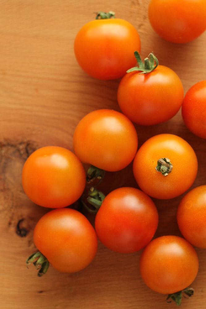 ミニトマトの育て方-トマトのプロフィール