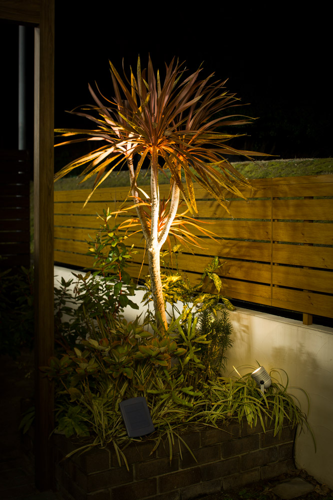 樹木には、スポットライトを使うと一気に華やかな雰囲気になります