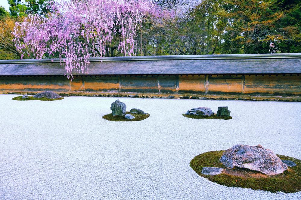 世界遺産のひとつである龍安寺の石庭