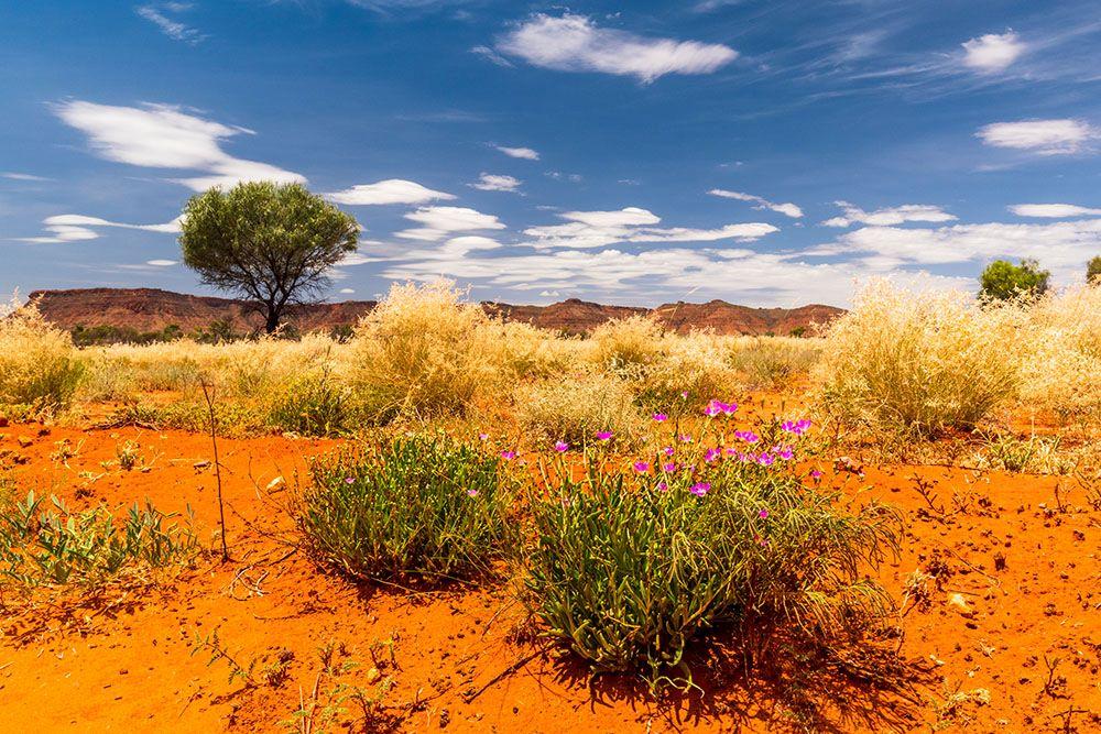 オーストラリアの風土