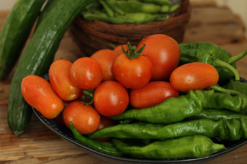 プランターで育てよう! ミニトマトの栽培方法【管理編】