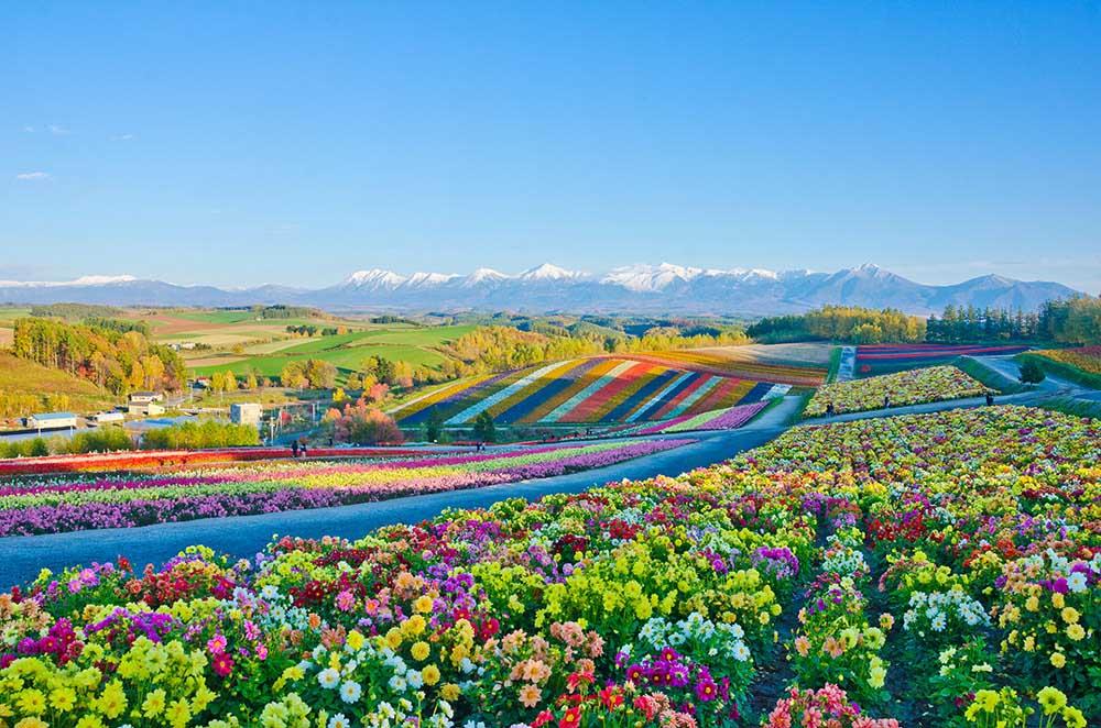 北海道ガーデン