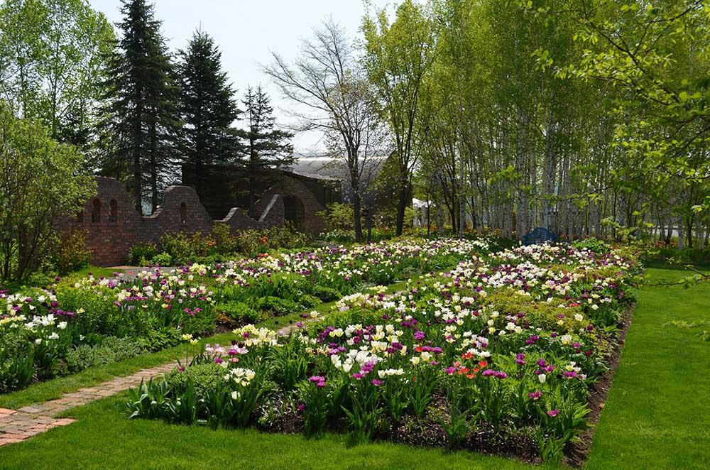 上野ファームの春