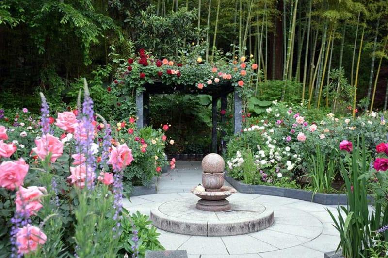 円通院のバラ