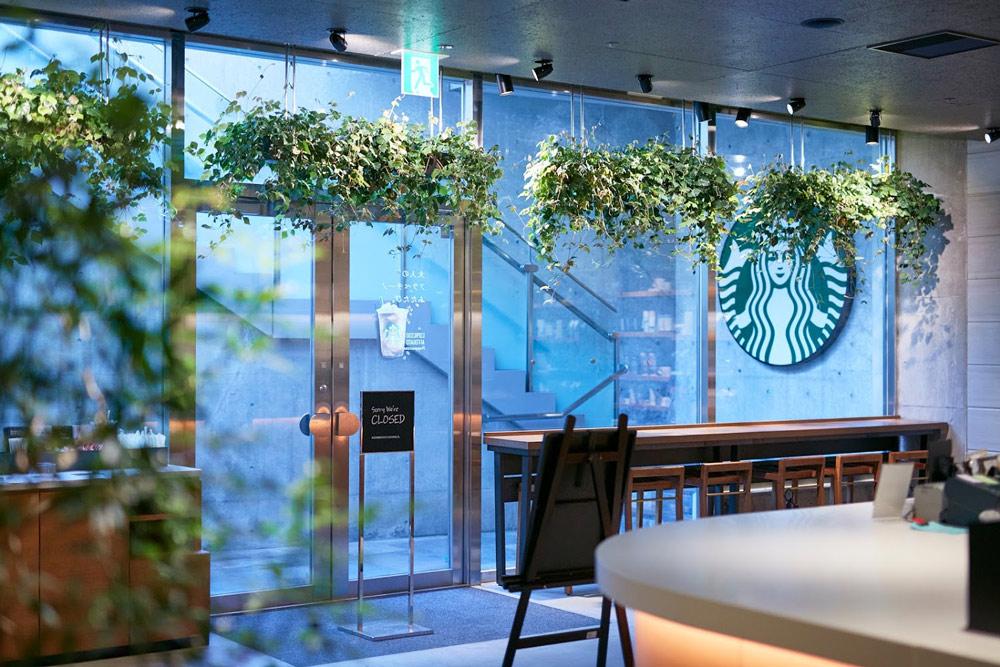 神宮の森へと繋がる表参道の地下のカフェ