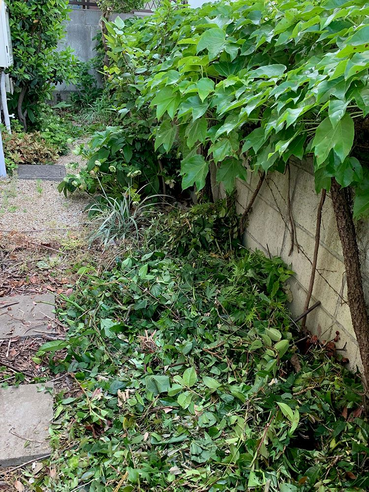 ガーデンシュレッダーでマルチング利用