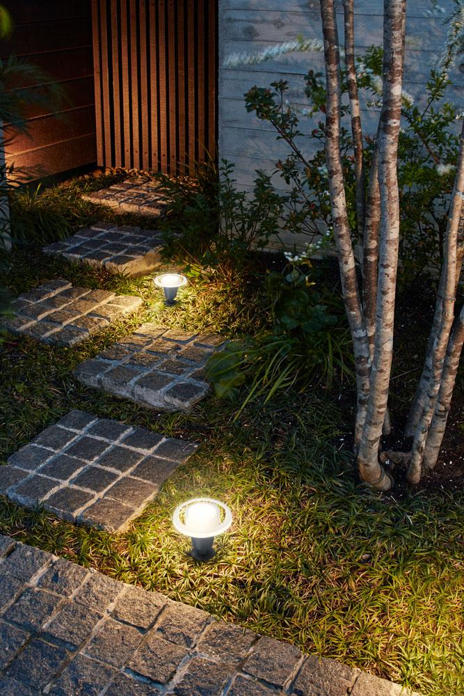 足元や低木を照らす「地のひかり」
