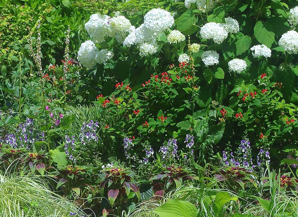 トヨタ鞍ヶ池記念館の花壇