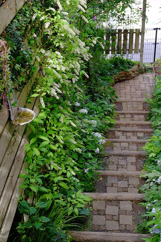 階段のガーデン