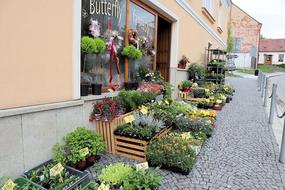 テルチの園芸店