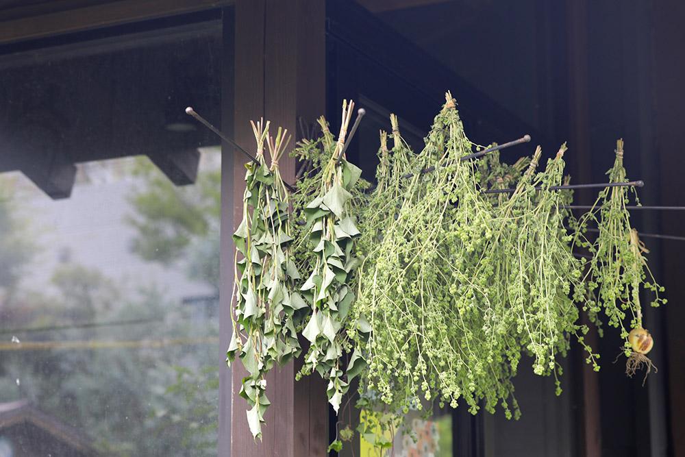 Watanabe Garden 蔵