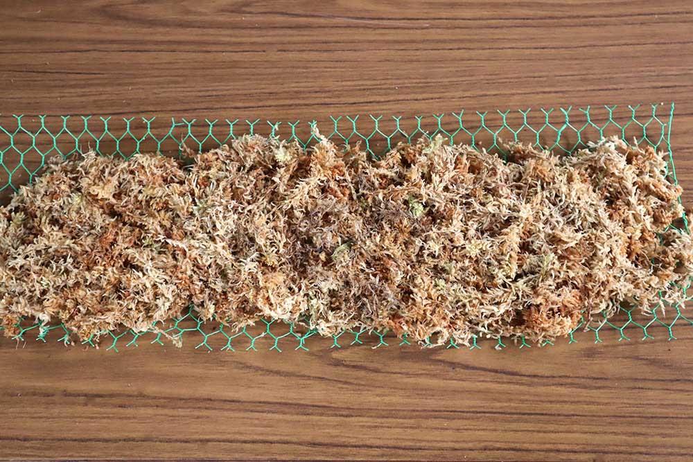 多肉リースの土台の作り方