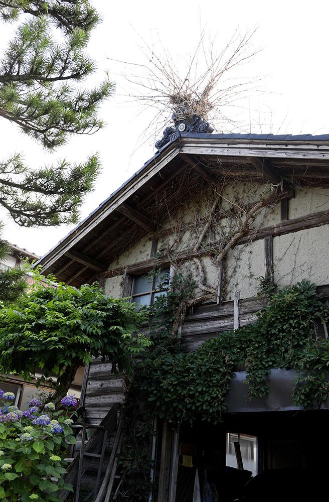 牛舎の屋根