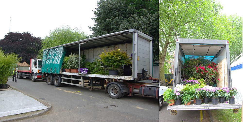植物の搬入