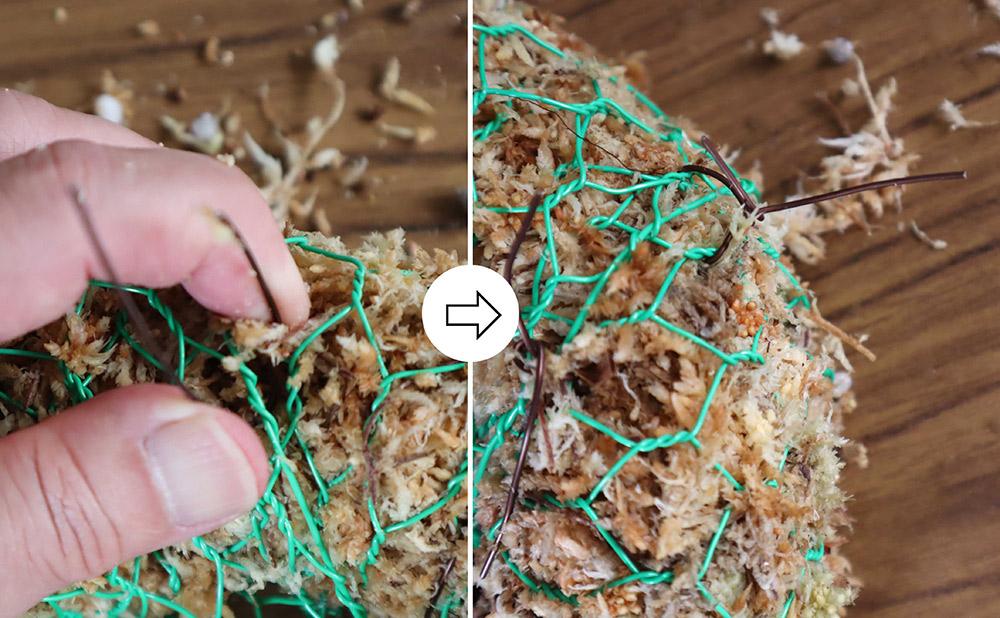 多肉リース土台の作り方