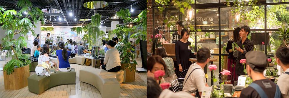 """マンションや商業施設、オフィス、病院や空港までも、室内に植物があるところ全てが緑に興味を持つきっかけとなる""""場""""に"""