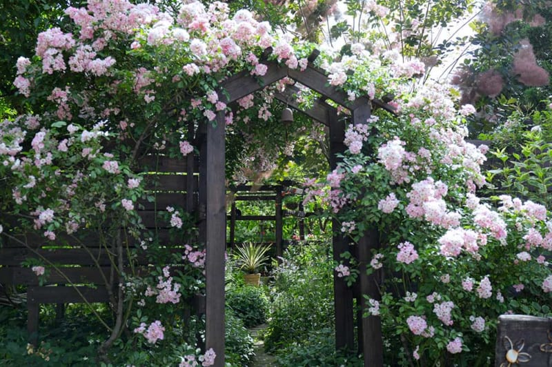 healing garden TAKAHARI