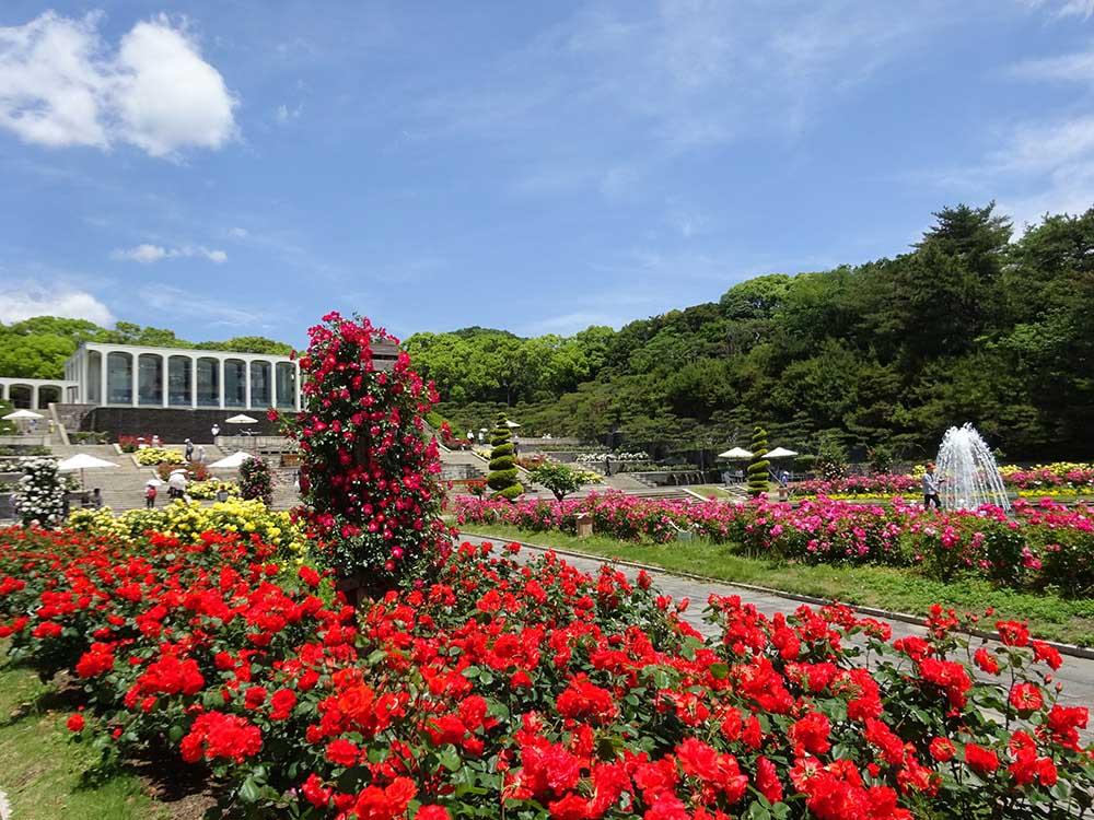 神戸市立須磨離宮公園