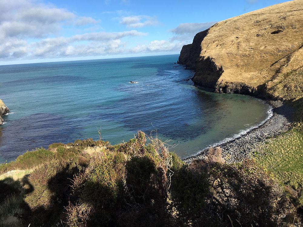 ニュージーランドの海岸