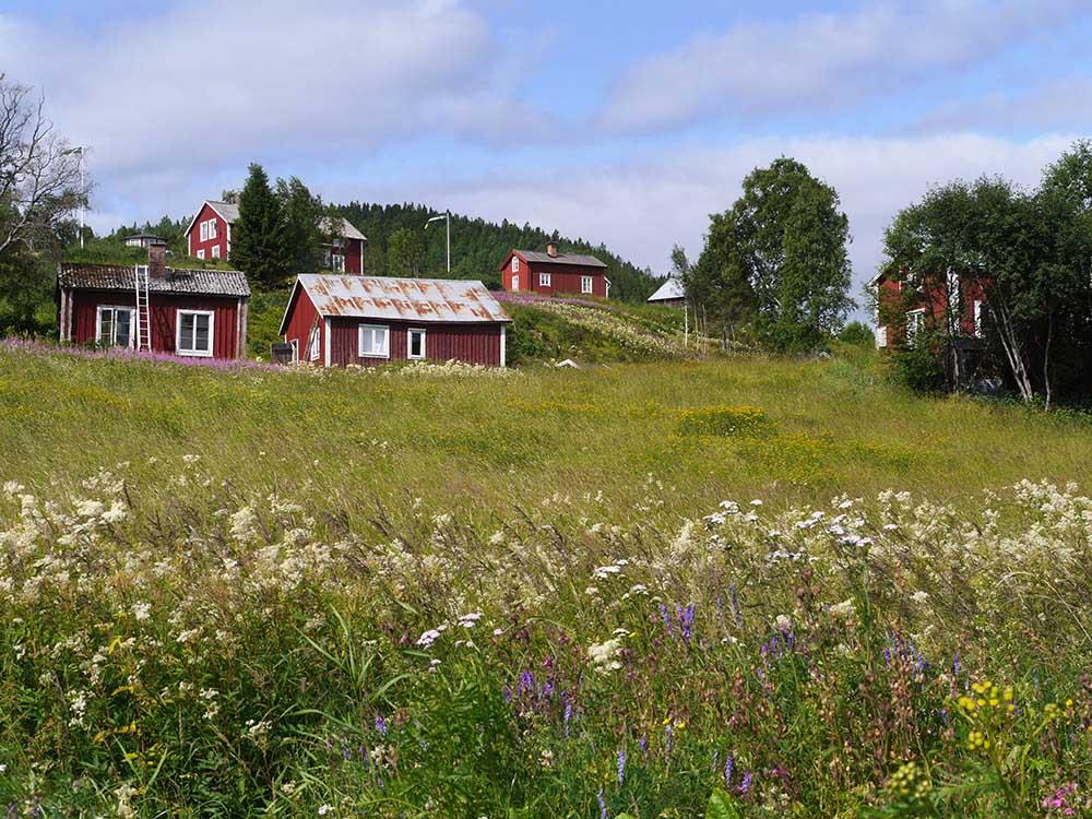北欧風ガーデン