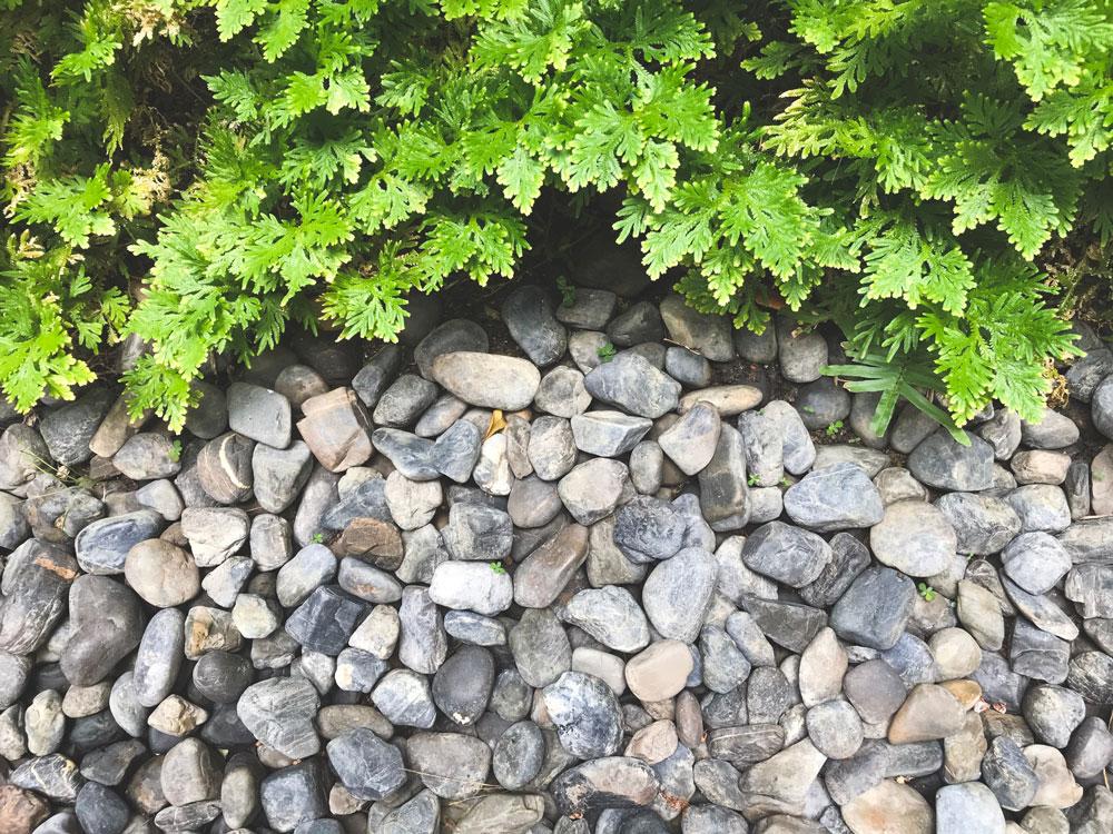 庭の防犯対策:防犯砂利を敷く
