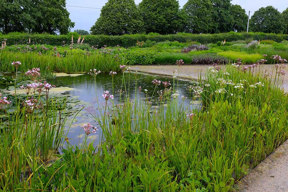 ハウザー&ワース・サマセット 睡蓮の池