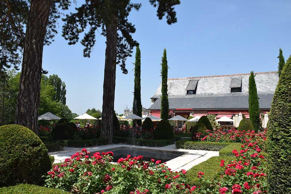 クロ・リュセ城の中庭のバラ
