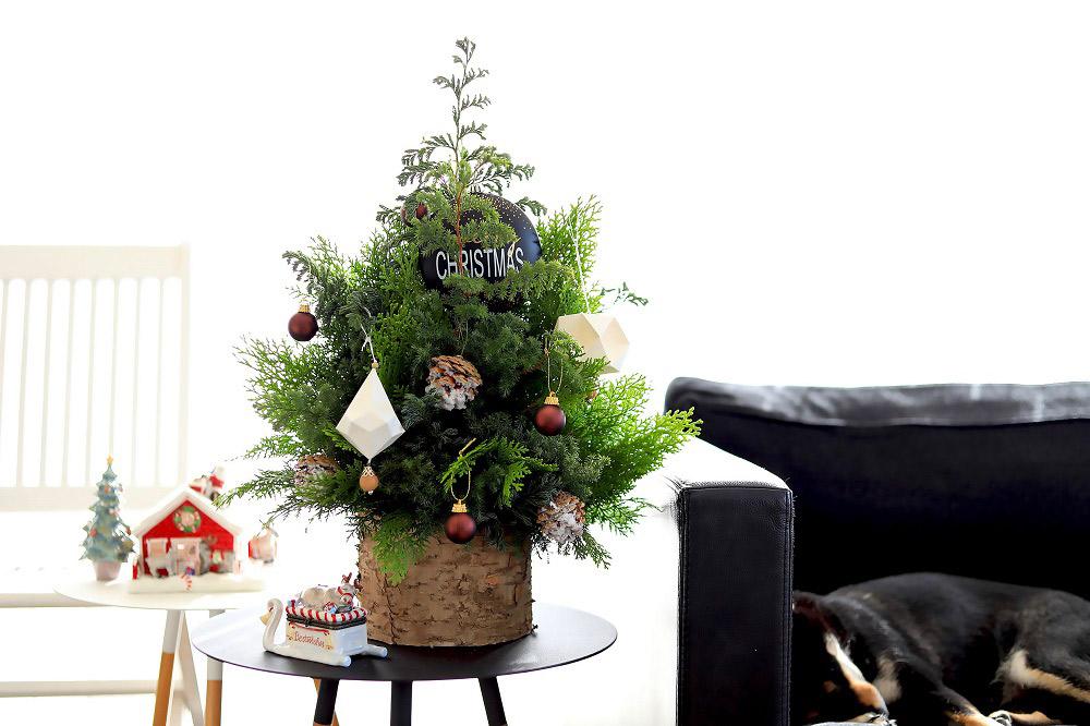 ツリーがなくても大丈夫! クリスマスツリー風アレンジメント